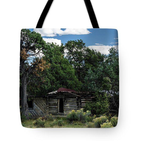 Forgotten Homestead - 8783 Tote Bag