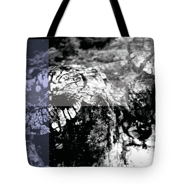 Forgotten Tote Bag by Jamie Lynn