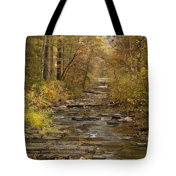 Fork River Ablaze In Color Tote Bag