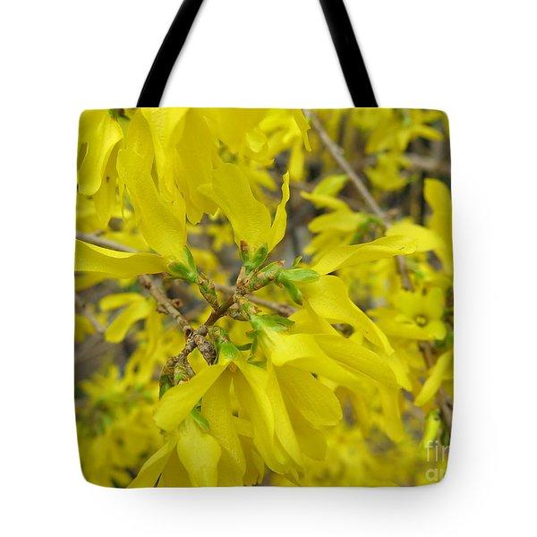 Forsithia  Tote Bag