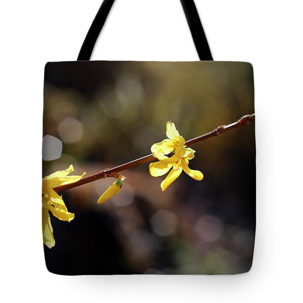 Tote Bag featuring the photograph Forsythia Flowers by Helga Novelli