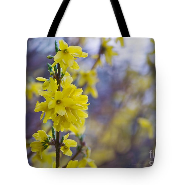 Tote Bag featuring the photograph Forsythia by Rima Biswas