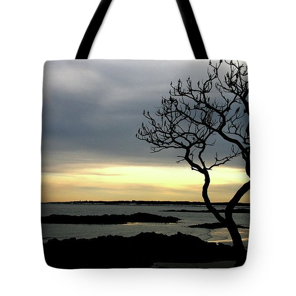 Fort Foster Tote Bag