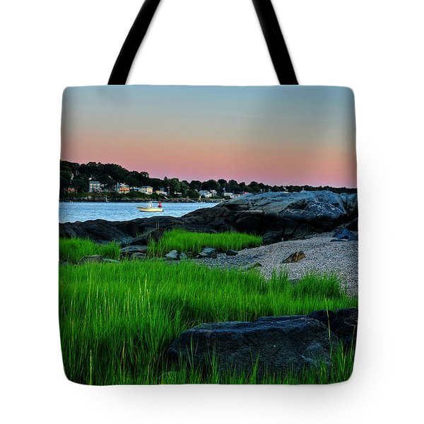 Fort Pickering Light Through The Tall Grass Salem Ma Tote Bag
