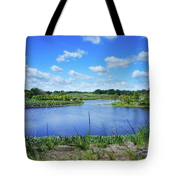 Fort Pierce Florida Savannah Tote Bag