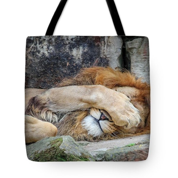 Fort Worth Zoo Sleepy Lion Tote Bag