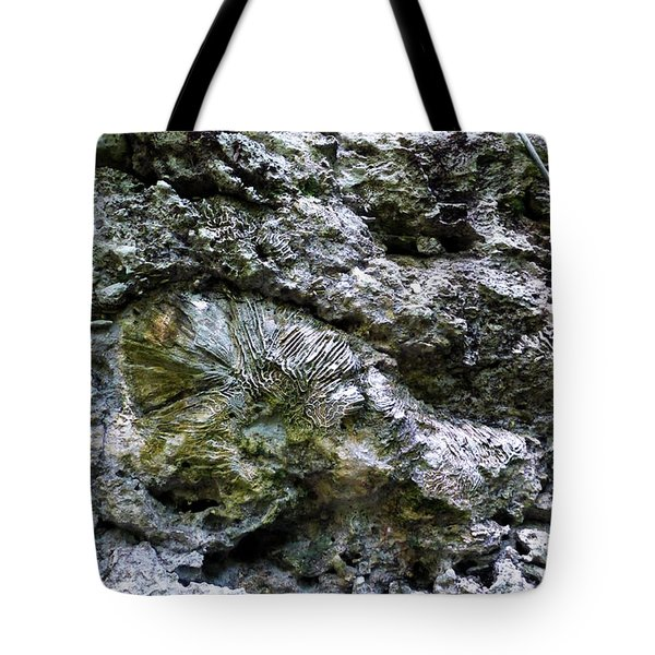 Tote Bag featuring the photograph Fossil In The Wall by Francesca Mackenney