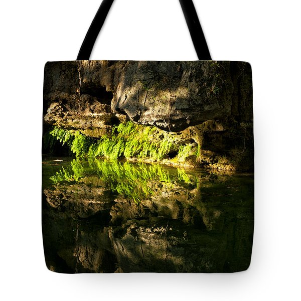 Fossil Reflecting Pool Tote Bag