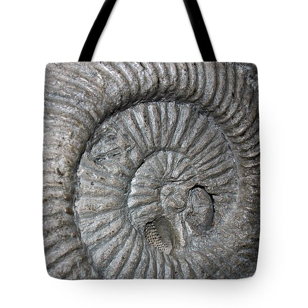 Fossil Spiral  Tote Bag by LeeAnn McLaneGoetz McLaneGoetzStudioLLCcom