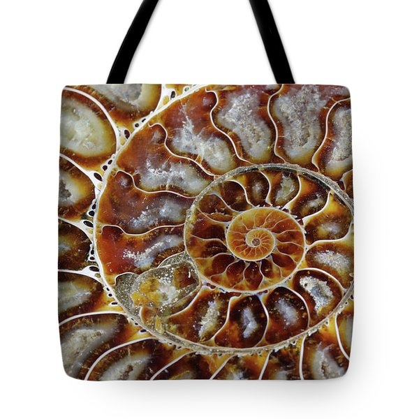 Fossilized Ammonite Spiral Tote Bag