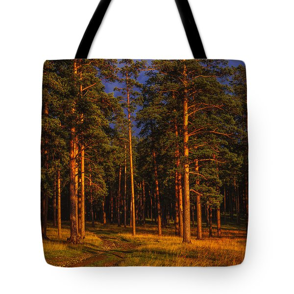 Forest After Rain Storm Tote Bag by Vladimir Kholostykh