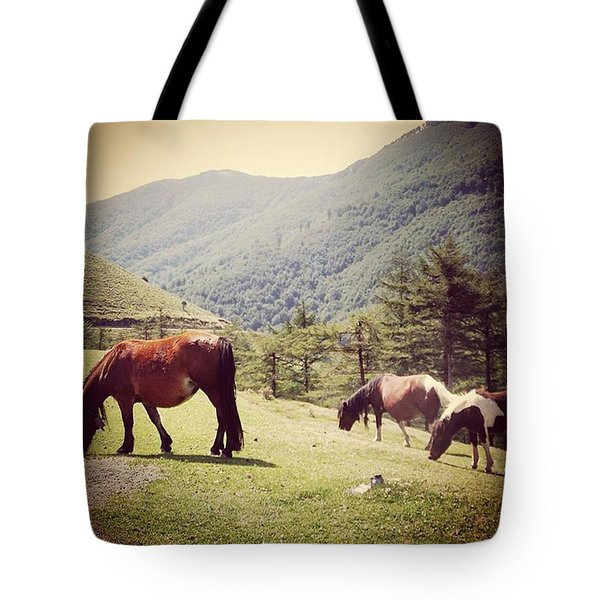Found These Gorgeous Mountain Ponies In Tote Bag