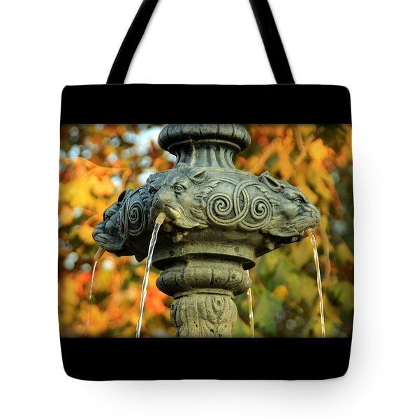 Tote Bag featuring the photograph Fountain At Union Park by Chris Berry