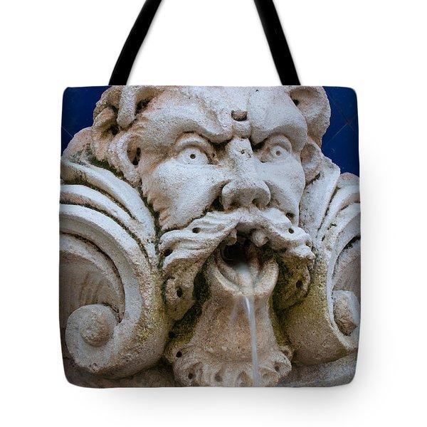 Fountain One Tote Bag