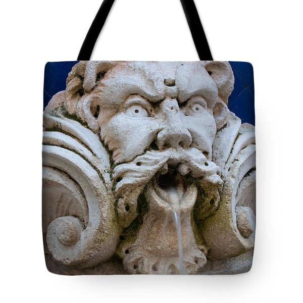Fountain One Tote Bag