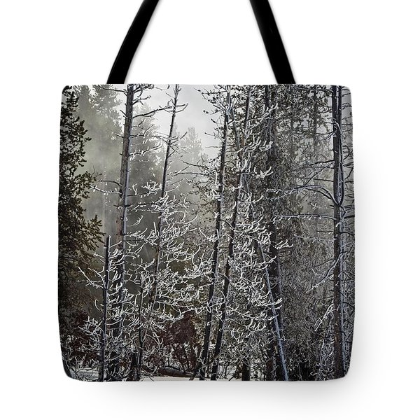 Fountain Paint Pots Shrouded In Snow And Ice Tote Bag