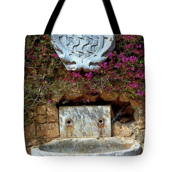 Tote Bag featuring the photograph Fountains And Flowers At The Roman Walls In Tarragona by Eduardo Jose Accorinti