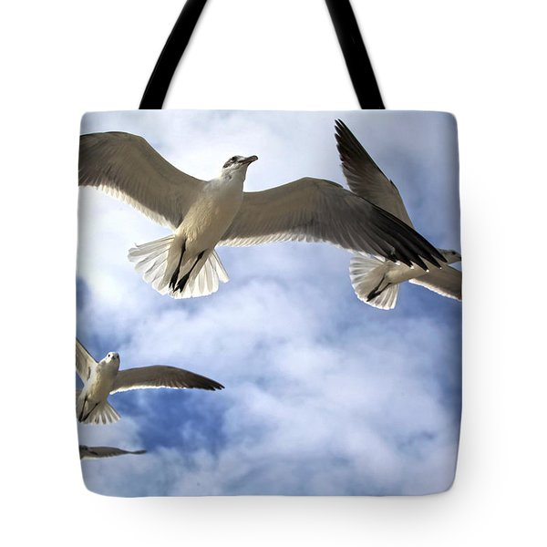 Four Gulls Tote Bag