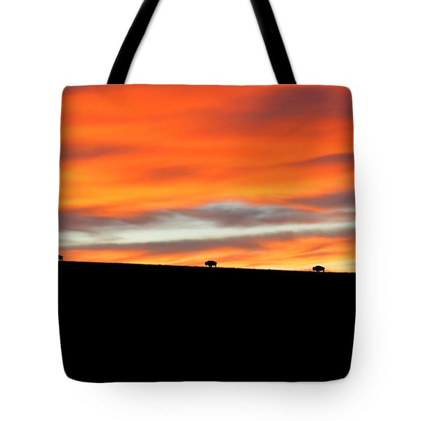 Four Kings Of The American Plains Tote Bag