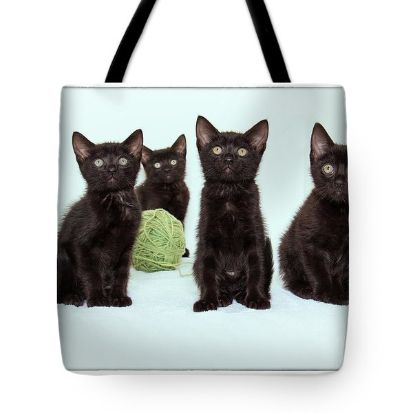Four Kittens Tote Bag