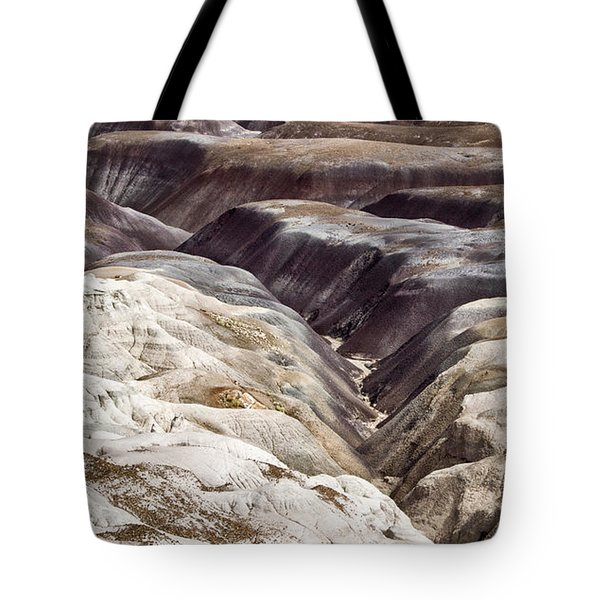 Tote Bag featuring the photograph Four Million Geologic Years by Melany Sarafis