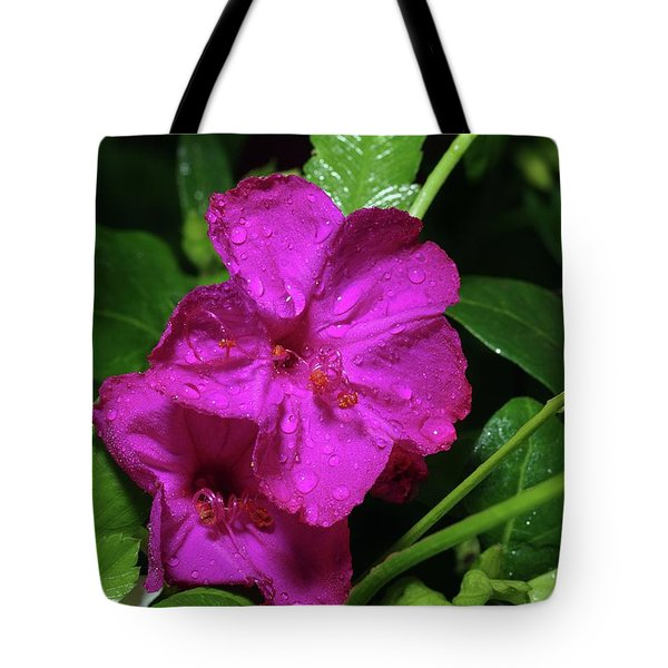 Tote Bag featuring the photograph Four O'clock At 9am  by Richard Rizzo