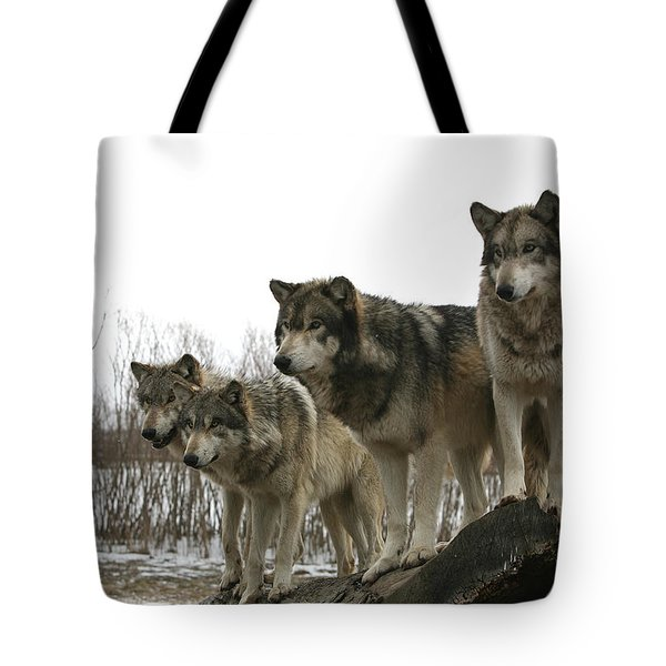 Tote Bag featuring the photograph Four Pack by Shari Jardina