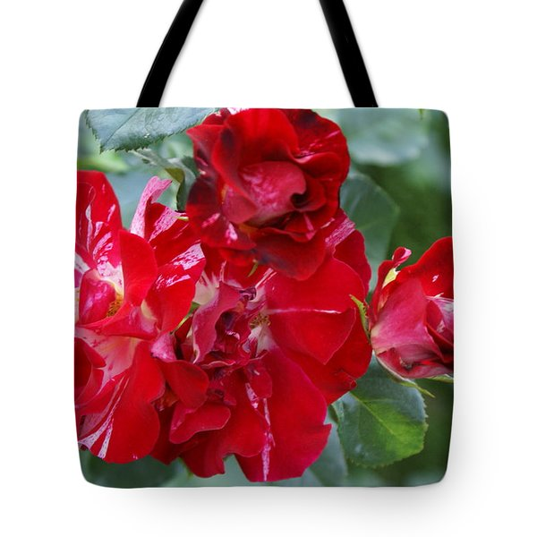 Fourth Of July Roses Tote Bag by Jacqueline Russell