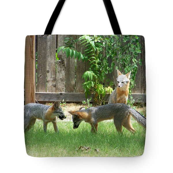 Tote Bag featuring the photograph Fox Family by Deleas Kilgore