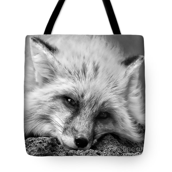 Fox Head Black And White Square Format Tote Bag