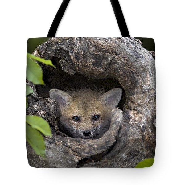 Fox Kit In Log Tote Bag