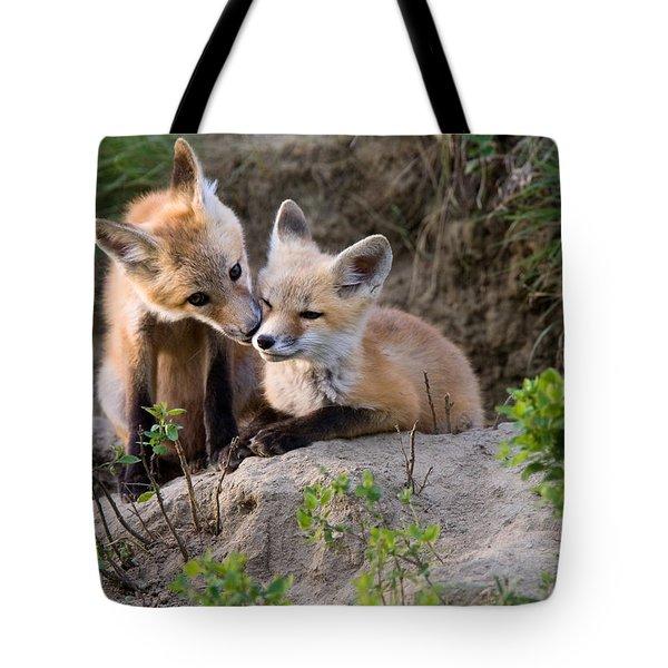 Fox Kits Canada Tote Bag by Mark Duffy