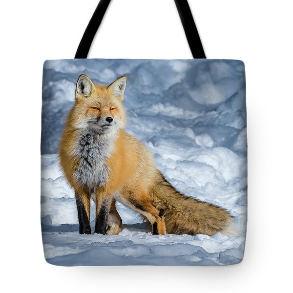 Fox On A Winter Afternoon Tote Bag