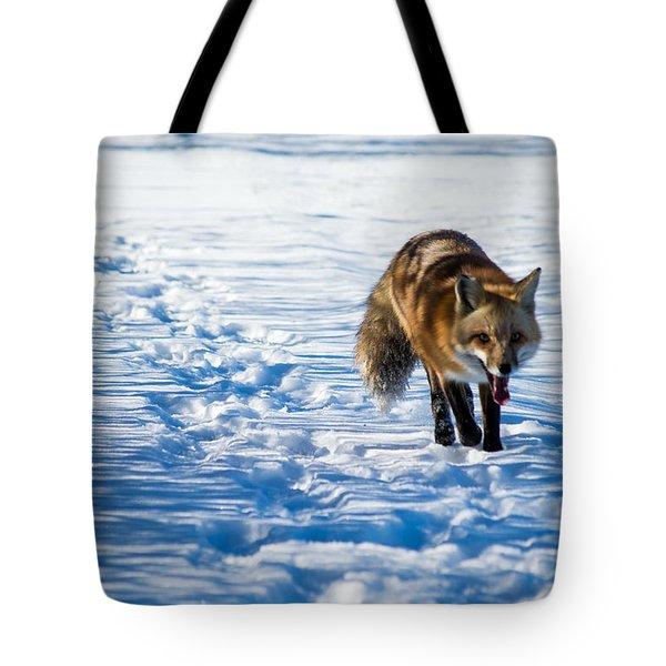 Fox Path Tote Bag
