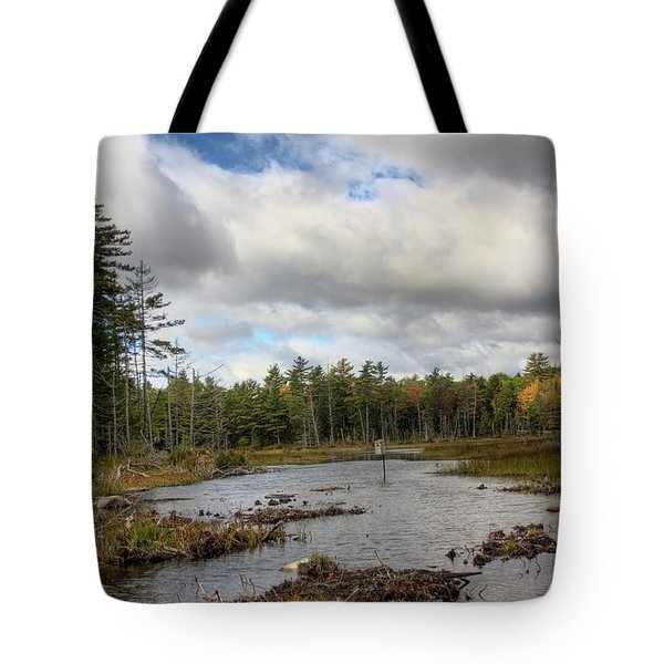 Tote Bag featuring the photograph Fox Pond I by Greg DeBeck
