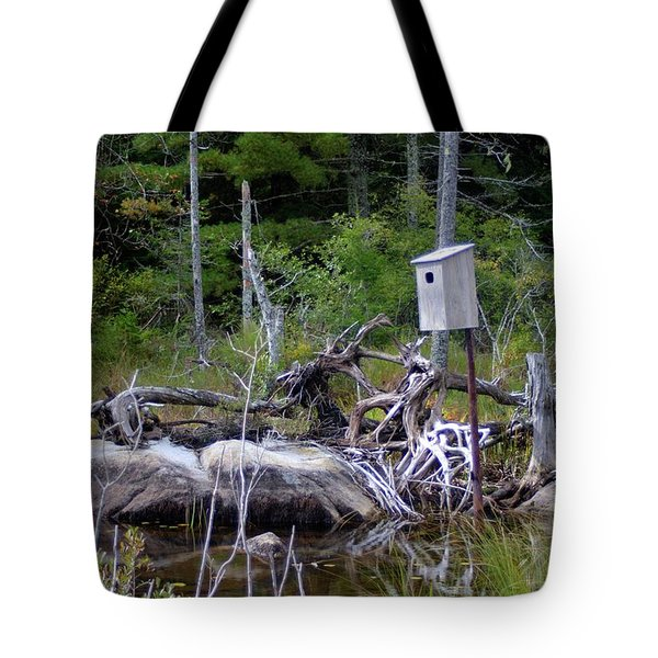 Tote Bag featuring the photograph Fox Pond II by Greg DeBeck