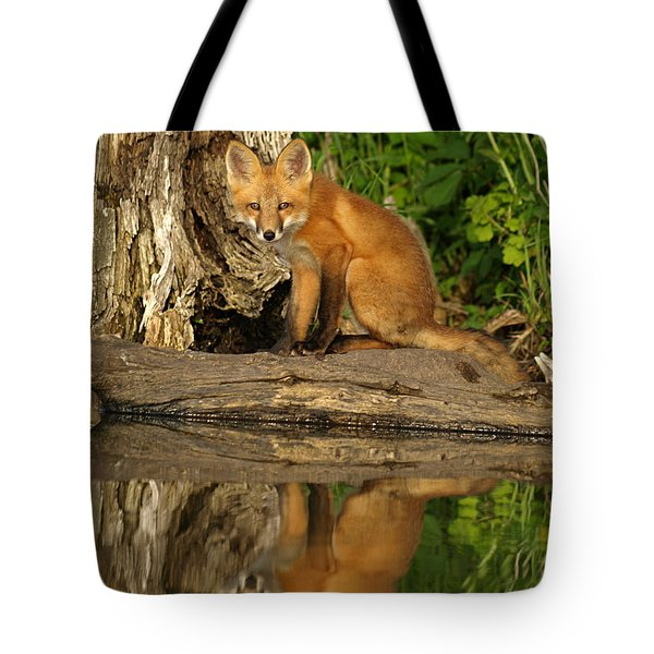 Tote Bag featuring the photograph Fox Reflection by James Peterson