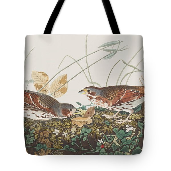 Fox Sparrow Tote Bag by John James Audubon