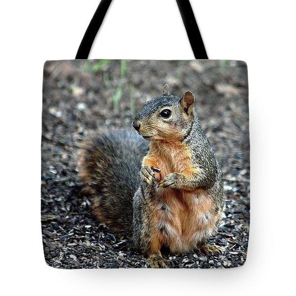 Fox Squirrel Breakfast Tote Bag by Sheila Brown