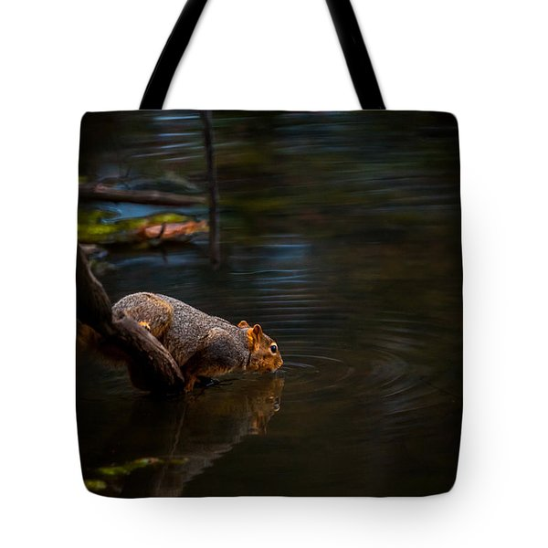 Fox Squirrel Drinking Tote Bag
