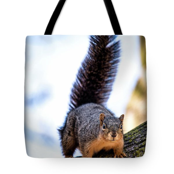 Tote Bag featuring the photograph Fox Squirrel On Alert by Onyonet  Photo Studios