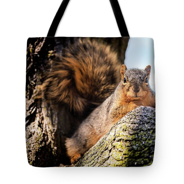 Fox Squirrel Watching Me Tote Bag