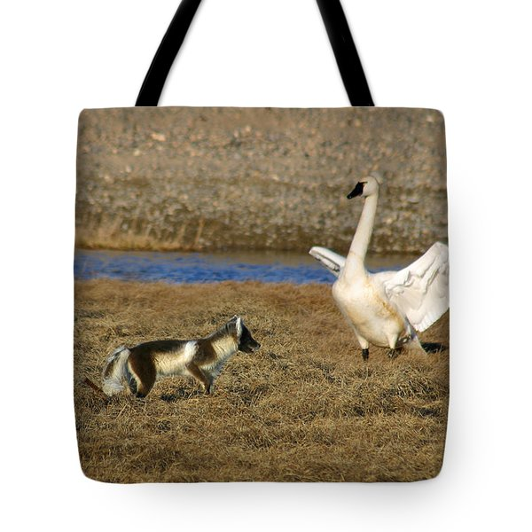 Fox Vs Tundra Swan Tote Bag