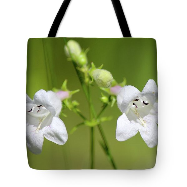 Foxglove Beardtongue Tote Bag