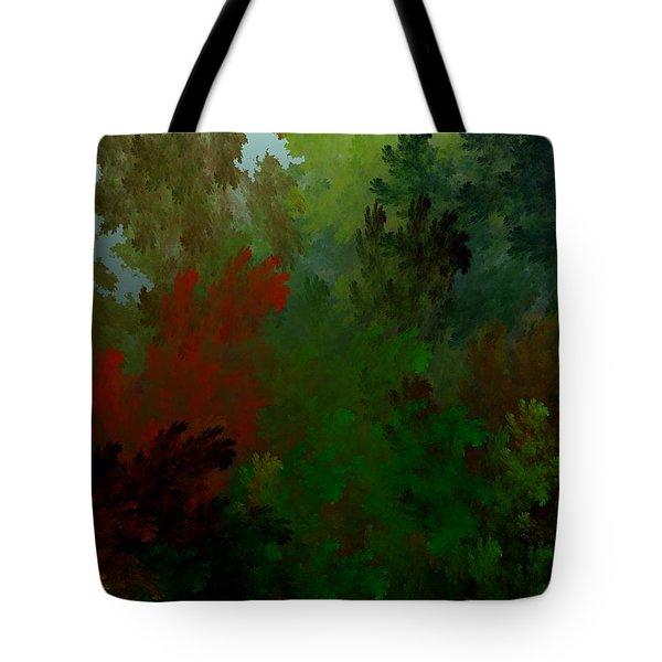 Fractal Landscape 11-21-09 Tote Bag by David Lane