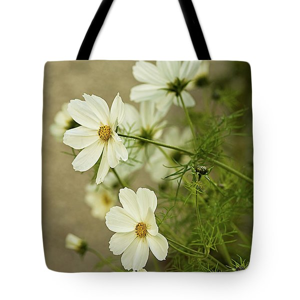 Fragile Cosmos Tote Bag