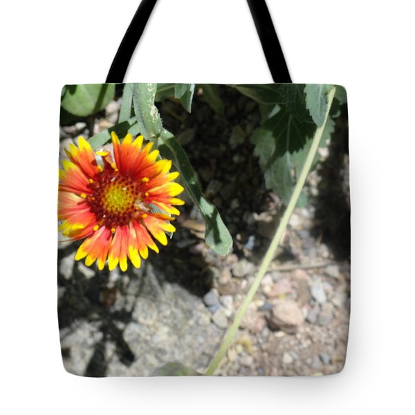 Fragile Floral Life On The Trail Tote Bag