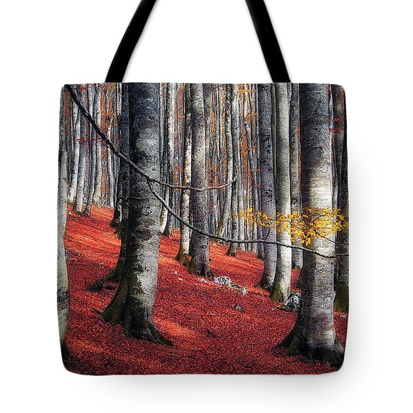 Fragility II Tote Bag
