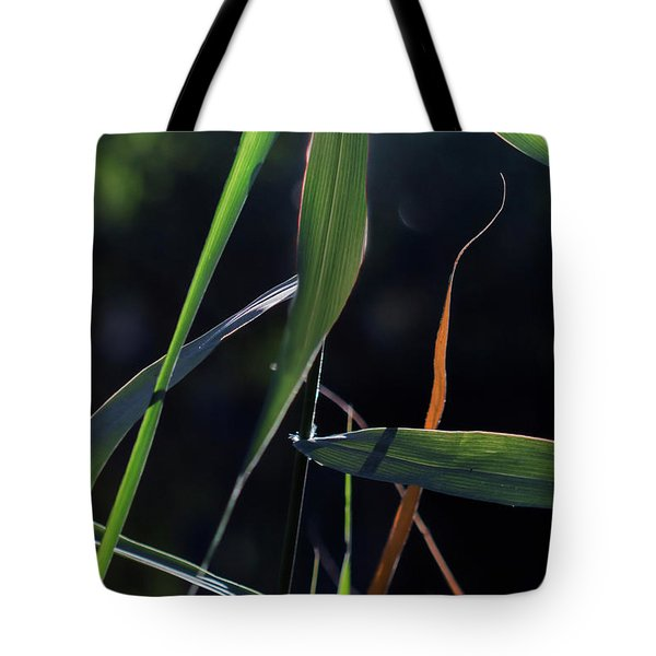 Tote Bag featuring the photograph Fragment by Linda Lees