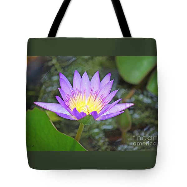 Fragrant Water Lily Tote Bag by Terri Mills
